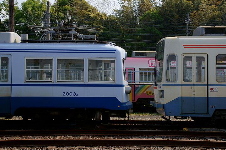DSC05609.jpg
